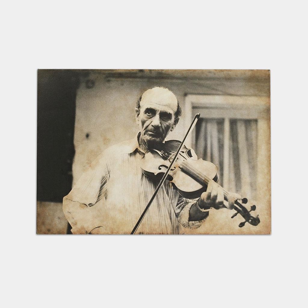 ジプシーのバイオリニストの写真(正面