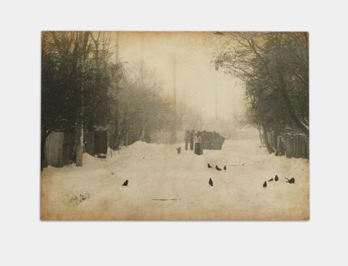 iv | Snow